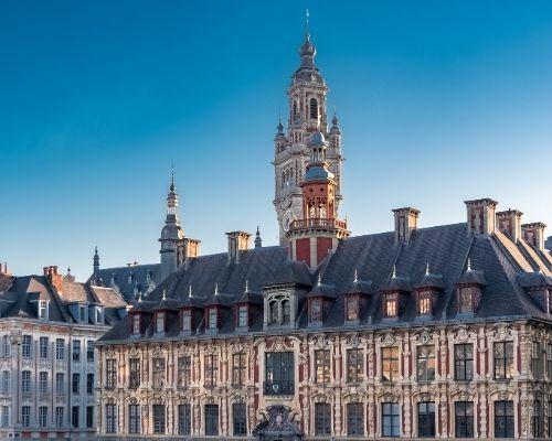 Achat neuf à Lille